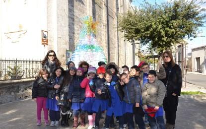 Un Albero di Natale ecosostenibile sul piazzale del Convento