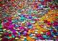 """Il 24 febbraio Guagnano si colora con la terza edizione del """"Carnevale nelle Terre del Negroamaro"""". Il 3 marzo appuntamento a Villa Baldassarri"""