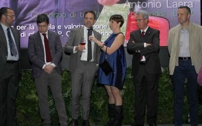 L'Arena di Verona ospiterà gratuitamente una degustazione dei vini del Salice. Ad annunciarlo é il primo cittadino Flavio Tosi