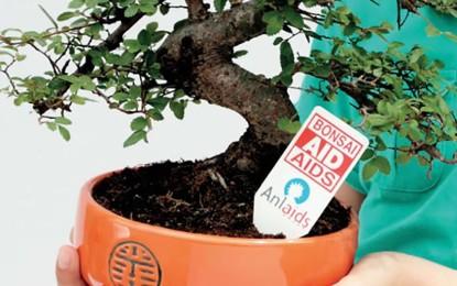 Domenica il Rubik è in piazza con i bonsai ANLAIDS contro l'AIDS