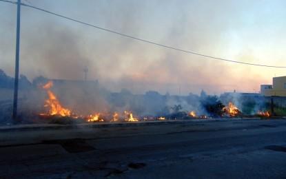 Rovi e sterpaglie in fiamme, pomeriggio di apprensione ieri in via Dalla Chiesa