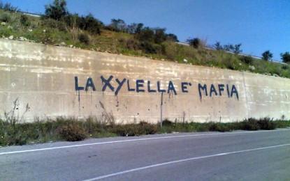 """""""La Xylella è una mafia"""", le riflessioni del dott. Fabio Coppola"""