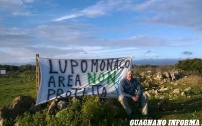 Macchia mediterranea di Lupomonaco, i VAS presentano un esposto al Sindaco di Veglie in difesa dell'oasi naturale