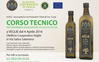Dal 4 aprile a Veglie un corso per aspiranti assaggiatori di olio d'oliva