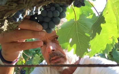 Settimana asiatica per i vini del Sud di Claudio Quarta Vignaiolo Dal 16 al 22 maggio le cantine parteciperanno ad importanti appuntamenti del settore