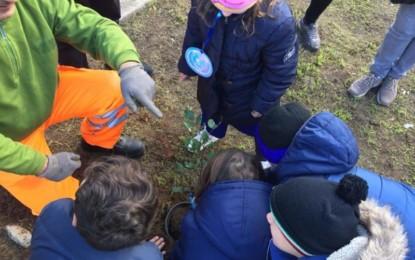 Giornata Mondiale dei Diritti dei Bambini: l'Assessorato all'Ambiente di Trepuzzi dona tre alberi alla Scuola Elementare