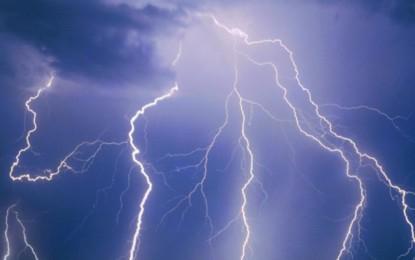 Un fulmine colpisce un albero sulla Novoli-Trepuzzi: tanta paura ma nessun ferito
