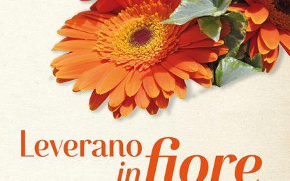 """""""Leverano in Fiore"""", sabato si inaugura l'appuntamento dedicato all'arte floreale"""