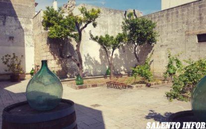 """""""HostAria"""", il progetto che ripensa il futuro del Museo del Negroamaro di Guagnano: stasera l'inaugurazione"""